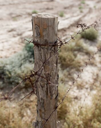 cattle wire wire: barbed wire fence in the nature