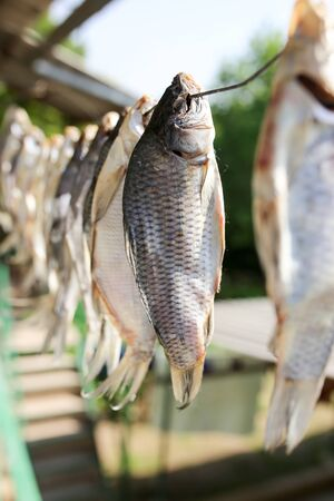 sun-dried salted fish in the air Stock Photo