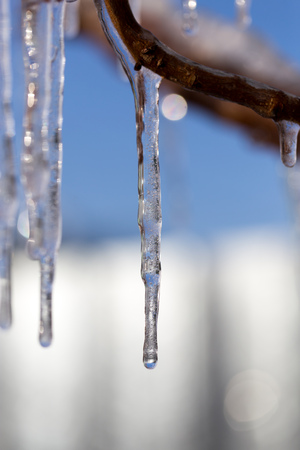 Icicle on a background of blue sky Stock Photo