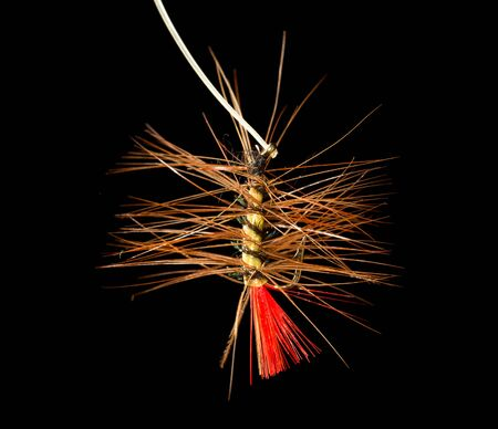 hilo rojo: fly to catch fish on a black background
