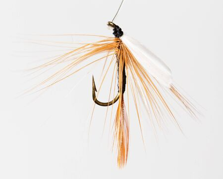 fly for fishing on a white background .