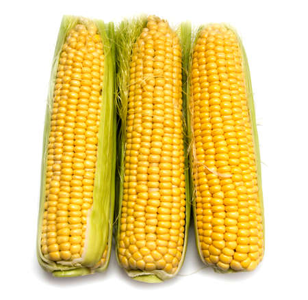 Yellow corn in the cob on a white background . Stock Photo