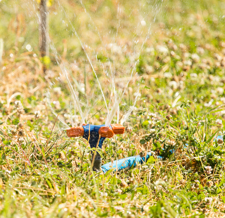 Watering a lawn from a hose in the open air .