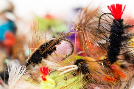 flies for catching fish with feathers. macro