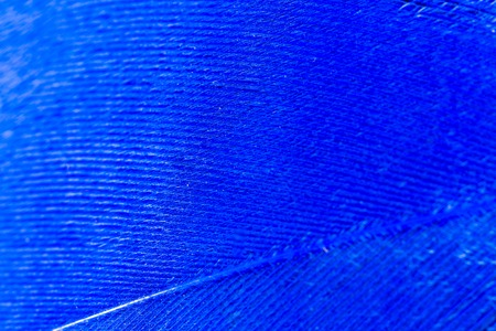 A blue feather as an abstract background
