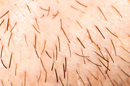 Bristles on the beard of a man. Macro