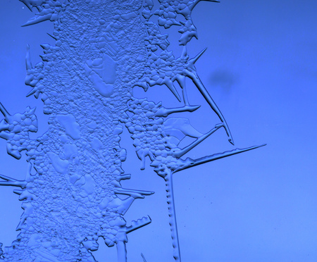 Snow on the blue window glass. Macro