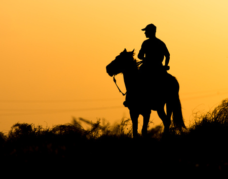 Silhouette of a man on a horse at sunset . Stock Photo