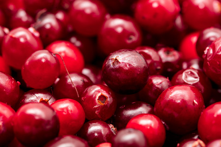 Red cranberry berries as a background. Macro