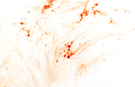 Drops of red blood on a white background. Abstract texture