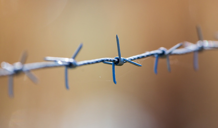 Metal barbed wire on nature as background . Stock Photo