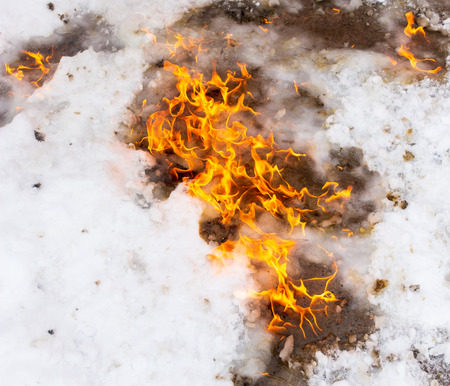 Flame of fire on white snow in winter . 免版税图像