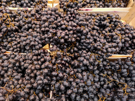 Black grapes in a shop window .