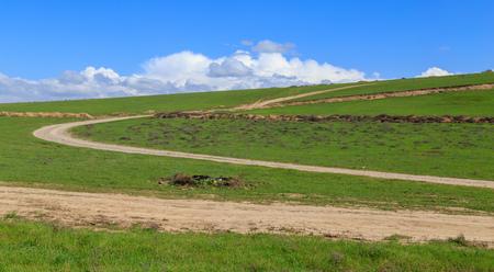 Schotterweg auf einem Feld im Frühjahr.