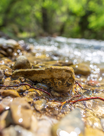 Stones in the mountain river in the spring.