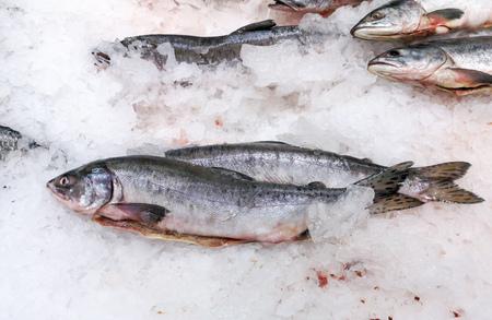 Pescado congelado en hielo en el mostrador de la tienda.