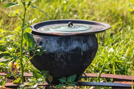 Pot for cooking in the oven in nature.
