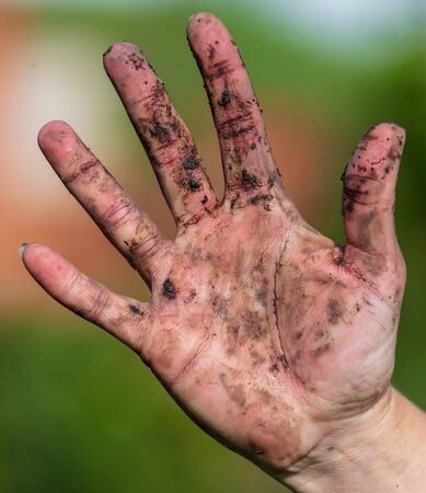 Hand in black dirt ground on nature. 写真素材