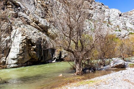 River and bare trees in the mountains. Foto de archivo - 129858830
