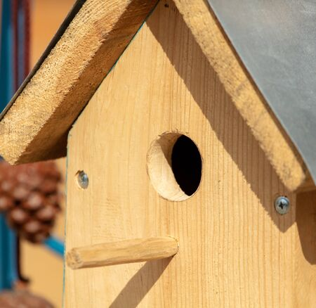 Entrance to a wooden birdhouse in the park.