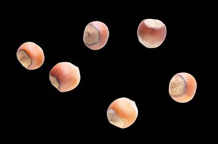Hazelnuts nuts isolated on black background. Standard-Bild - 133250167