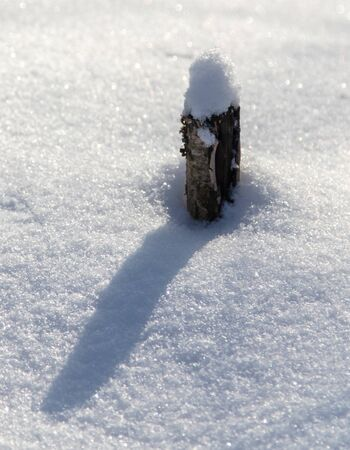 Wooden peg in the snow in winter.
