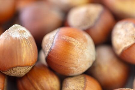 Hazelnuts as a background. Macro photo Banque d'images