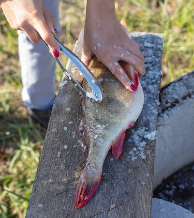 Cleaning fish from scales with hands.