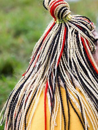 Colored pigtails on the girl's head. Zdjęcie Seryjne