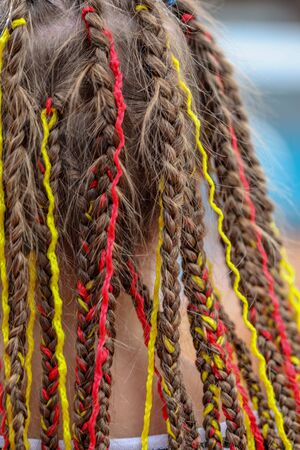 Colorful braids on the girl's head .