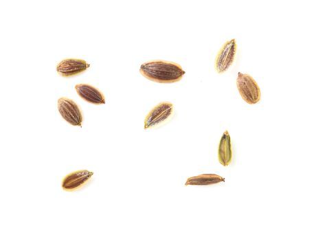 Dill seeds isolated on a white background. Macro