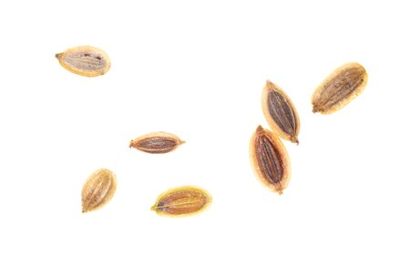 Dill seeds isolated on a white background. Macro Stock Photo