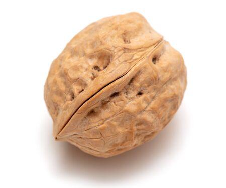 Walnut isolated on a white background. Fresh nut