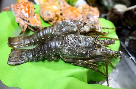 Sea crayfish cooked according to a special recipe. A dish of Chinese cuisine. Standard-Bild
