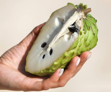 Sliced sugar apple in the hand. Exotic fruit