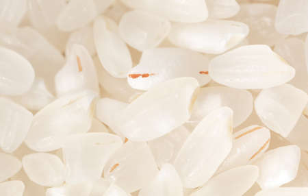 Close up white rice as background. Macro