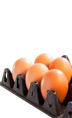 Eggs in black carton box on white background photo