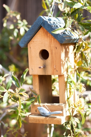 Cute bird house in garden photo