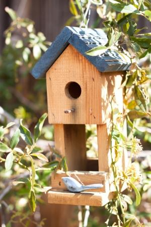 Linda casa de aves en el jard�n Foto de archivo