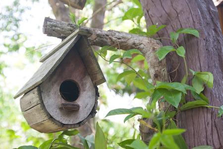 Casa de madera del p�jaro en el �rbol