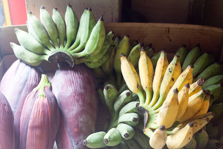 Green and yellow bananas with fruits on bucket photo