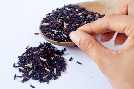 Primer plano de arroz Riceberry p�rpura bruto, es un mestizo entre Thai Hom Ninguna (arroz jazm�n negro) y Jasmine arroz blanco