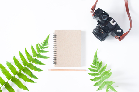 Flat lay of earth tone color notebook, pencil, camera and fern leaves isolated on white background with copy space Stock Photo