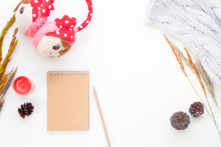 Creative flat lay of Winter concept with notebook, pencil, dried flowers and girl accessories on white background