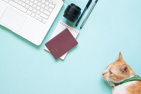 Flat lay of modern workspace desk with laptop, passport, camera lens and cat on blue colour. Travel, hobby and lifestyle concept Stockfoto