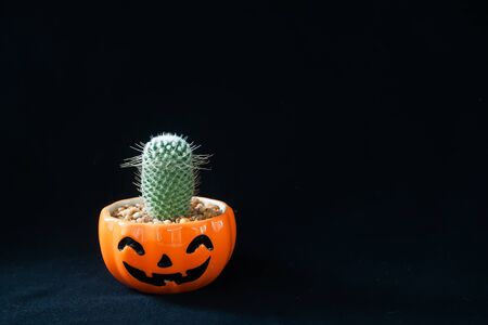 Accessory of decorations Happy Halloween day background concept with cactus plant