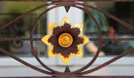 gold colored flower, rusty ornamental ironwork in front of a window Stock Photo