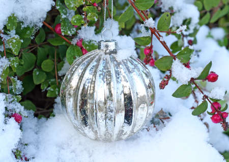 silver Christmas ball hanging on a bush covered with snow
