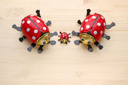 small family of chocolate ladybugs on bright wood