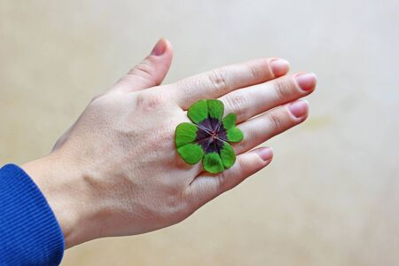 hand of a young woman with a four-leafed clover, bright background Stock Photo